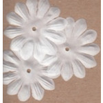 Bazzill Wings - Bitty Blossoms White