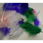 Bag of Odd Feathers - Assorted Colours