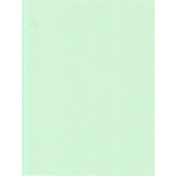 """Provo Craft - Acid Free Paper - 11""""x8.5"""" - Meadow Green"""