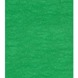 Tissue Paper - 50 x 76cm - Holiday Green